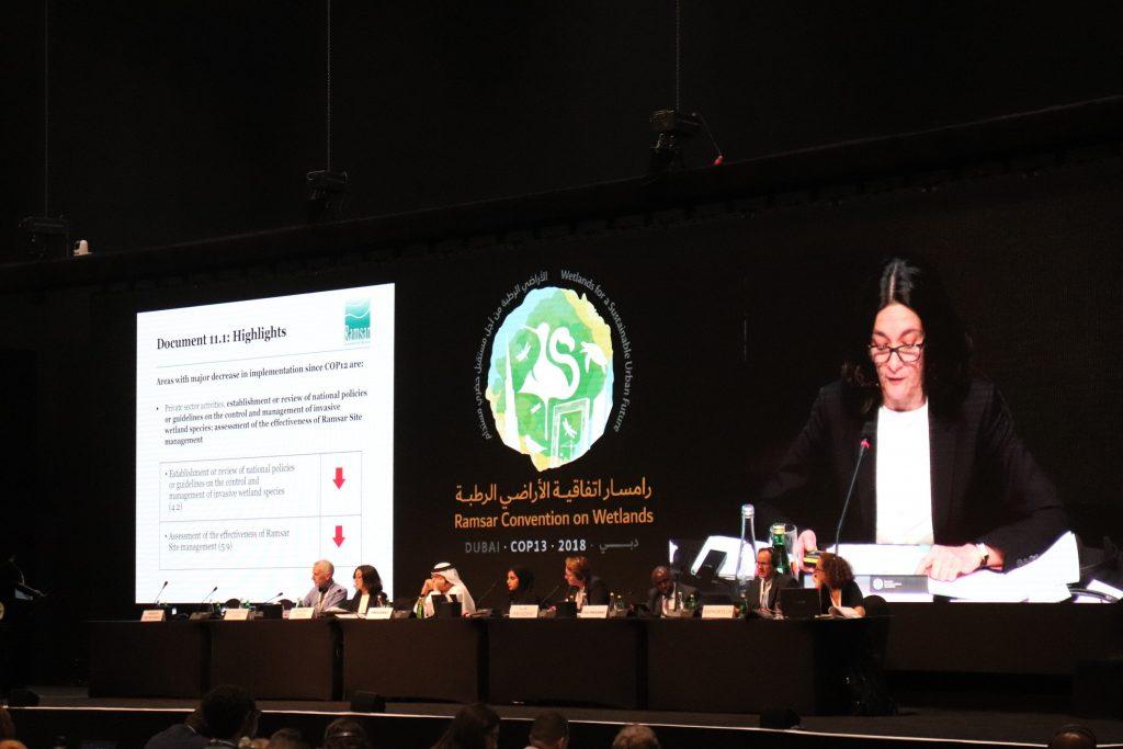 COP 13, Dubai 2019