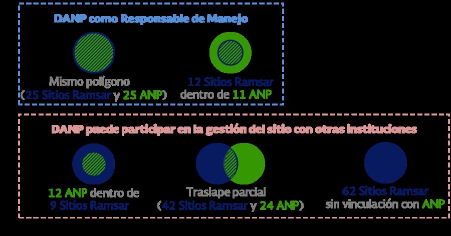Roles de las Direcciones de ANP (DANP) en los 80 Sitios Ramsar relacionados con 69 ANP Federales
