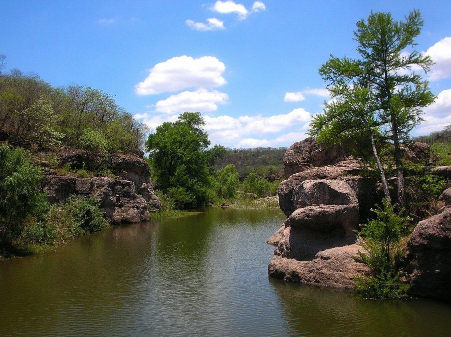 Ecosistema Arroyo Verde APFF Sierra de Álamos Río Cuchujaqui, Sonora